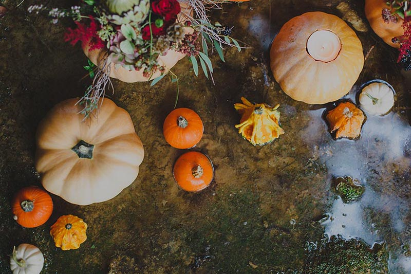 boho-in-autumn-weddings-art-133